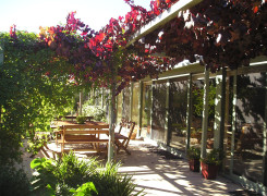 All living areas and bedrooms open out onto the northern pergola area with steel wires for deciduous vines