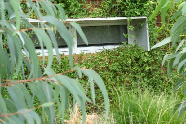 24 - eHouse - watson - Strine Design - Strine Environments - Best Canberra Builder - Green Architect Canberra - Sustainable
