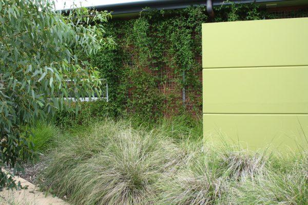 26 - eHouse - watson - Strine Design - Strine Environments - Best Canberra Builder - Green Architect Canberra - Sustainable